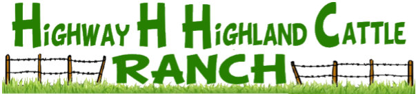 Highway H Highland Cattle Ranch Logo